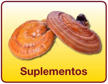 Suplementos - Una amplia variedad de suplementos reforzados con el hongo ganoderma para la salud y bienestar - Vida Divina