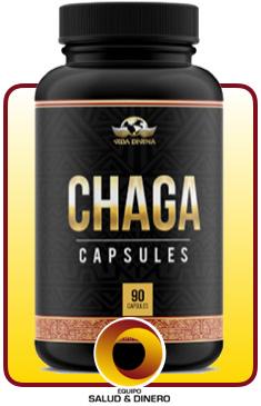 Chaga - Hongo Chaga - Suplementos para salud y bienestar - Vida Divina