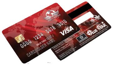 Tarjeta Visa para recibir pagos de Vida Divina - Paylution