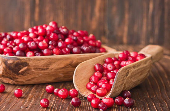Arandanos Rojos - Ingrediente de Té Divina - Vida Divina