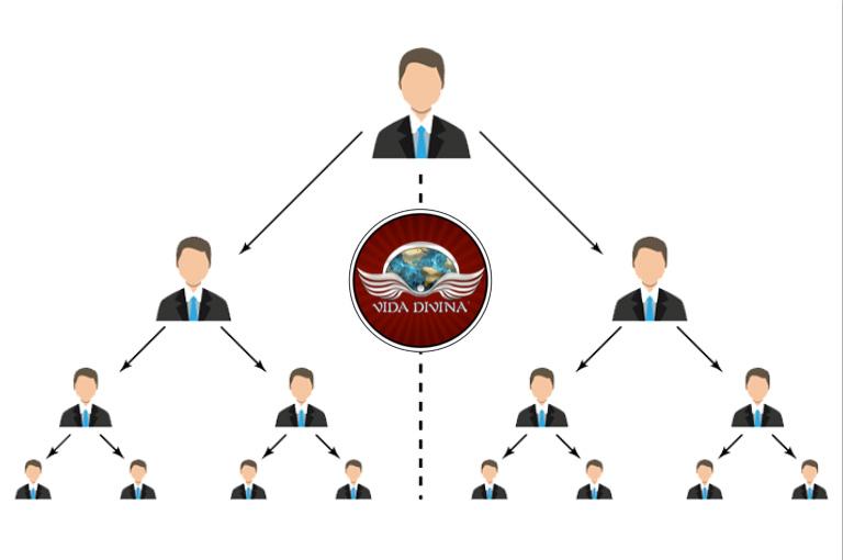 Estructura de un sistema binario de multinivel - Vida Divina